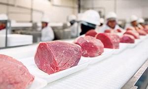 Bí kíp lựa thịt lợn sạch - tươi - ngon đúng chuẩn