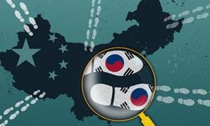 Samsung và nhiều công ty Hàn Quốc