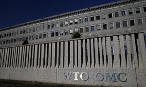 Lộ diện 8 ứng cử viên cho vị trí tổng giám đốc WTO