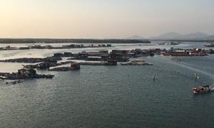 Bà Rịa – Vũng Tàu trình Thủ tướng chấp thuận chủ trương dự án Khu đô thị biển quy mô hơn 1.500 ha