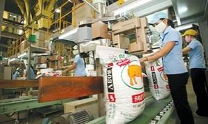Giảm thuế nhập khẩu, hỗ trợ ngành sản xuất thức ăn chăn nuôi