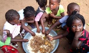 820 triệu người trên thế giới thiếu thức ăn