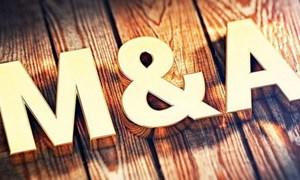 Chu kỳ mới của thị trường M&A Việt Nam: Khối ngoại chiếm ưu thế