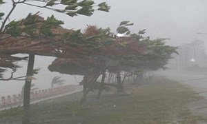Năm nay mưa bão có khả năng nguy hiểm hơn