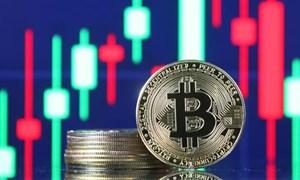 Bitcoin vượt 39.000 USD lần đầu tiên trong 6 tuần