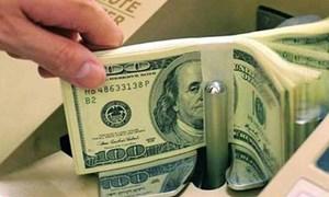 Mỗi năm lượng kiều hối gửi về Việt Nam là 2,5-3 tỷ USD