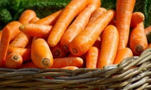 5 loại thực phẩm giúp da nói không với lão hóa