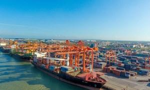 Doanh nghiệp vận tải, cảng biển thắng lớn