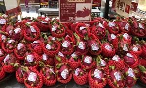 Kết nối doanh nghiệp xuất nhập khẩu nông sản Việt Nam – Nhật Bản