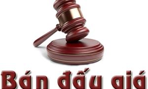 DATC lựa chọn tổ chức bán đấu giá khoản nợ, tư vấn pháp lý