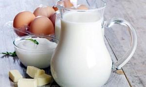 Bảy loại thực phẩm tốt cho xương