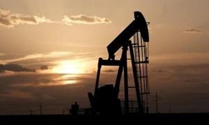 Giá dầu lên khi Trung Quốc tăng cường nhập khẩu dầu thô của Mỹ