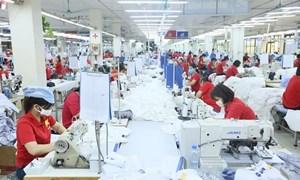 Thương mại Việt - Ấn có khả năng tăng 15-20 tỷ USD