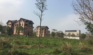 """Hà Nội """"lệnh"""" kiên quyết thu hồi dự án bỏ hoang"""