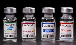 """Cổ phiếu dược nổi sóng nhờ liều """"doping"""" từ vắc xin COVID"""