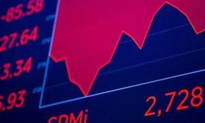 Nhà quản lý quỹ đã đánh bại 98% thị trường: Hãy bình tĩnh và mua vào dù thị trường biến động!