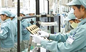 Niềm tin của doanh nghiệp FDI được củng cố vững chắc