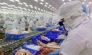 Nắm bắt cơ hội từ EVFTA, xuất khẩu thủy sản sang EU tăng mạnh