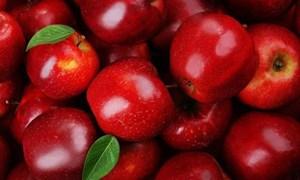 Những thực phẩm giúp răng thêm chắc khỏe