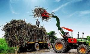 Dự báo giá đường tăng cho tới năm 2022, cơ hội với cổ phiếu ngành đường