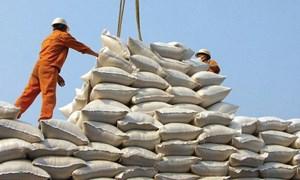 Cơ hội cho gạo Việt Nam vào thị trường Mỹ