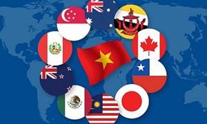 Hội nhập kinh tế quốc tế của Việt Nam trong bối cảnh hiện nay