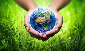 Ngành Tài chính hưởng ứng Chiến dịch làm cho thế giới sạch hơn năm 2021