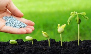 Đề xuất chính sách thuế giá trị gia tăng hỗ trợ doanh nghiệp sản xuất phân bón