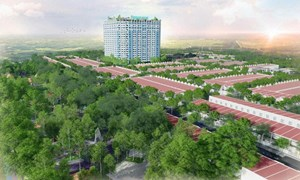 Truy tìm thị trường căn hộ chung cư