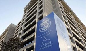Bất ổn chuỗi cung ứng và lạm phát, IMF cắt giảm dự báo tăng trưởng toàn cầu