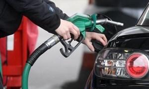Điều hành giá xăng trong nước phù hợp với thế giới, tạo mức giá phù hợp để hỗ trợ sản xuất, kinh doanh