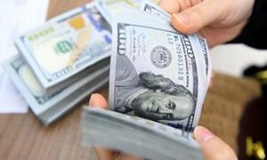 USD tiếp tục tăng, đồng euro mất giá hơn 1% tuần qua