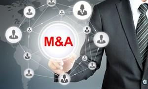 Những vấn đề pháp lý cần lưu ý trong mua bán và sáp nhập doanh nghiệp xuyên quốc gia