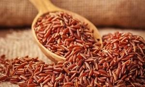 Thực hư chế độ ăn thực dưỡng chữa được ung thư?