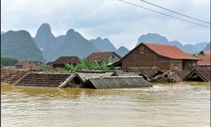 Hỗ trợ kinh phí khắc phục thiệt hại về nhà ở cho các tỉnh miền Trung, Tây Nguyên