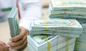 Điều gì giúp dự trữ ngoại hối lên tầm cao mới?