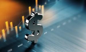 Đang xuất hiện nhiều xu hướng và cơ hội đầu tư - kinh doanh mới