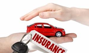 Tiếp tục hoàn thiện dự thảo Nghị định về bảo hiểm bắt buộc trách nhiệm dân sự chủ xe cơ giới