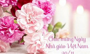Bộ trưởng Đinh Tiến Dũng gửi thư chúc mừng nhân Ngày Nhà giáo Việt Nam 20/11