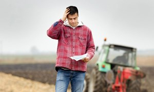 Nông dân phá sản ở mức kỷ lục, kinh tế Mỹ có