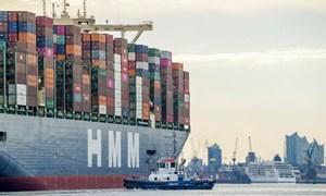 Hoạt động thương mại toàn cầu đang phục hồi nhanh