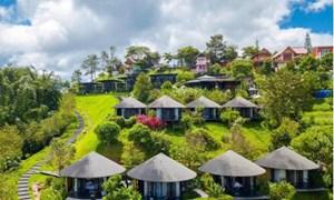 Kinh doanh homestay: Có nhà là chưa đủ