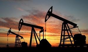 Triển vọng giá dầu năm 2020