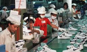 Adidas, Nike tiếp tục đến Việt Nam