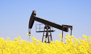 Giá dầu thô giảm, Hoa Kỳ chuẩn bị trừng phạt hàng loạt quan chức Trung Quốc