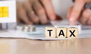 Trường hợp nào người nộp thuế không phải nộp hồ sơ khai thuế?