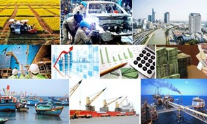 Kinh tế liên kết và phát triển bền vững