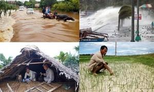 Việt Nam ứng phó hiệu quả với biến đổi khí hậu và thiên tai