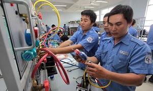 Phát triển hệ thống Giáo dục nghề nghiệp chất lượng cao
