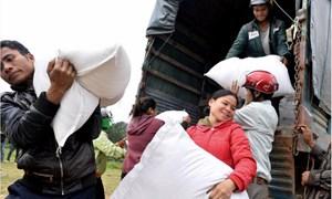 Năm 2018, xuất cấp 120.428 tấn gạo hỗ trợ nhân dân